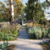 疗养花园世界的完美滋补品