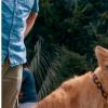 因为驯养老虎王而成名的DocAntle被指控犯有野生动物贩运罪